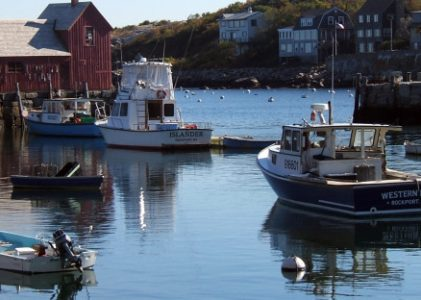 Inspiration from Downeast, Maine